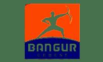 Bangur-Cement-204X122